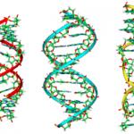 L' ADN pourrait bien relancer l'affaire Omar Raddad